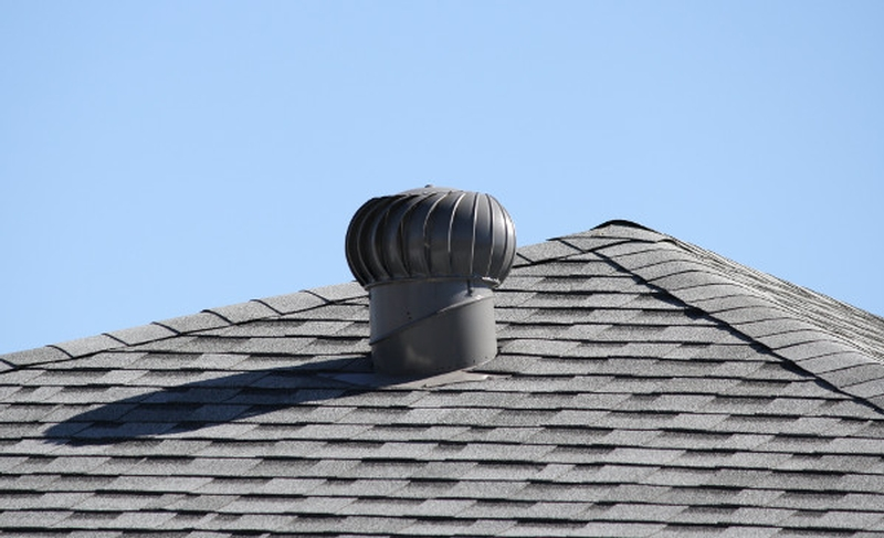 shingles lifespan chicago