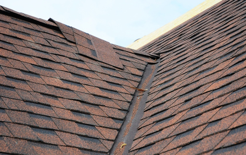 shingles rain damage roof
